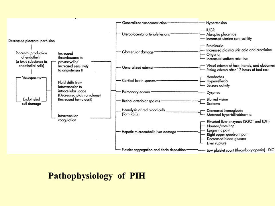 Pathophysiology of PIH