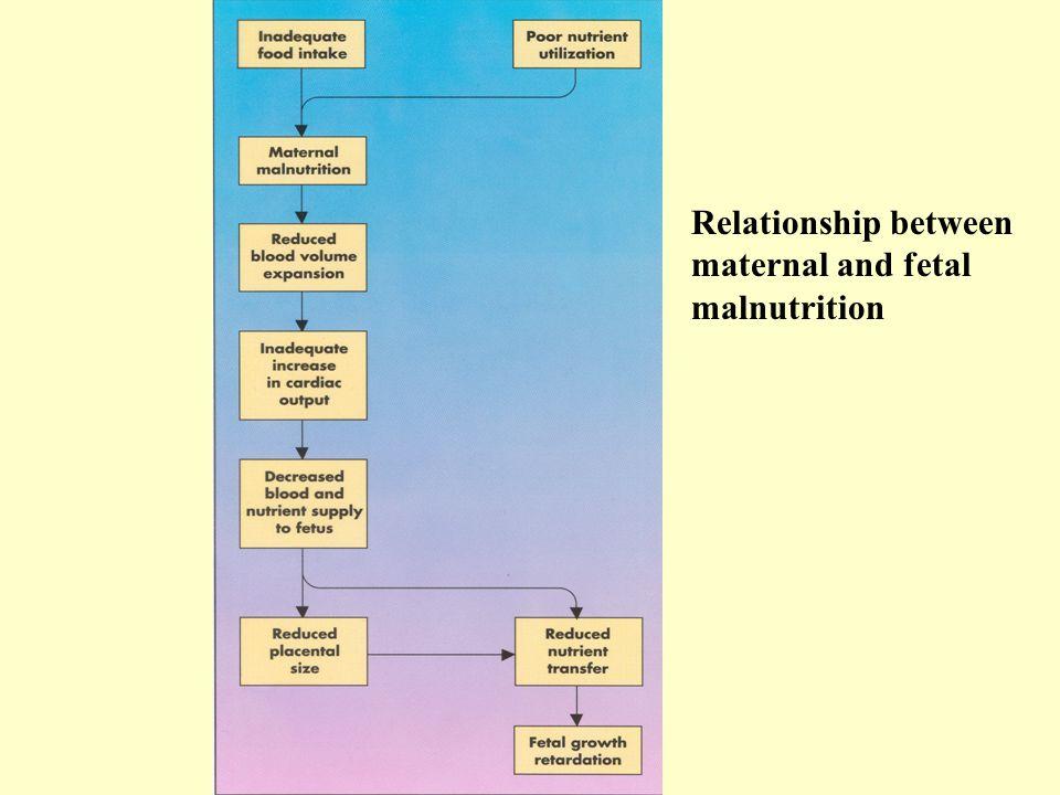 Relationship between maternal and fetal malnutrition