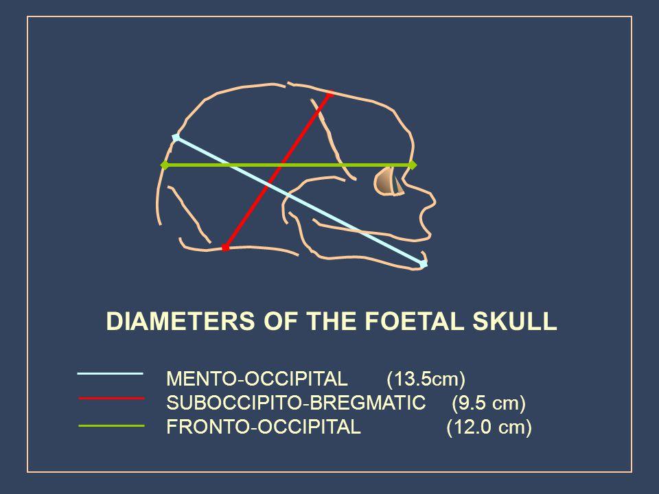 DIAMETERS OF THE FOETAL SKULL
