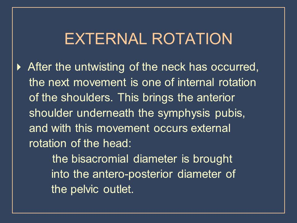 EXTERNAL ROTATION  After the untwisting of the neck has occurred,