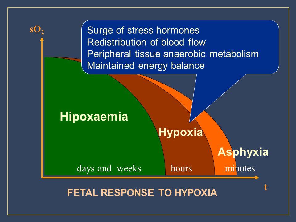 Hypoxia Asphyxia sO2 Surge of stress hormones