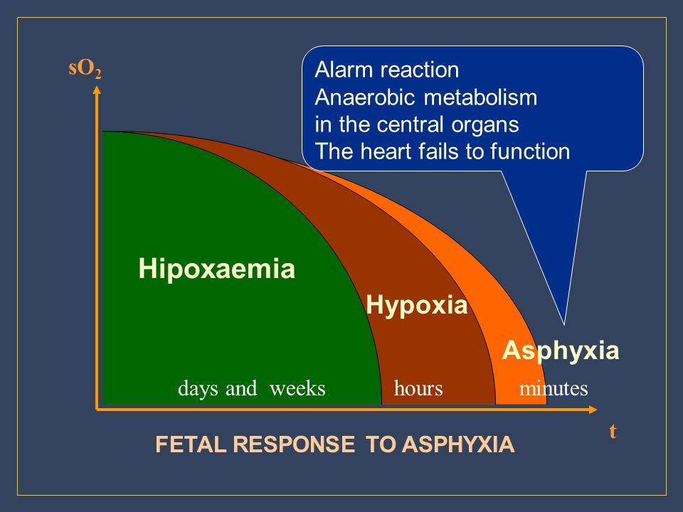Hypoxia Asphyxia sO2 Alarm reaction Anaerobic metabolism