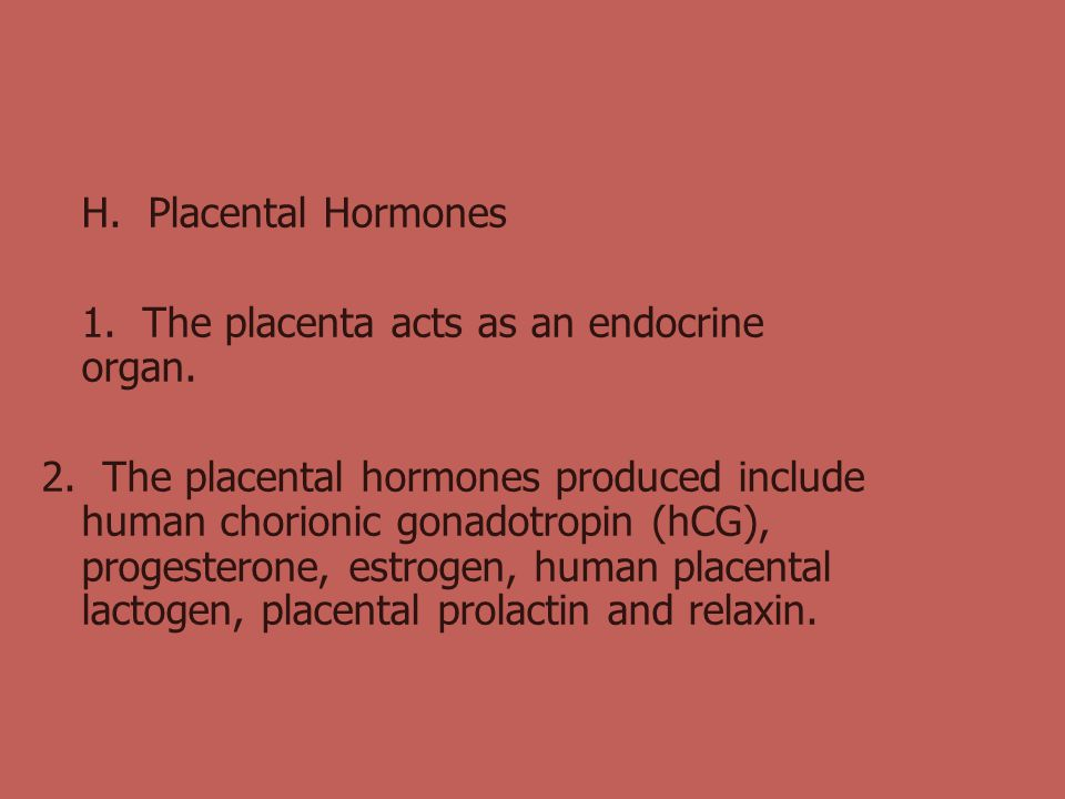 H. Placental Hormones 1. The placenta acts as an endocrine organ.