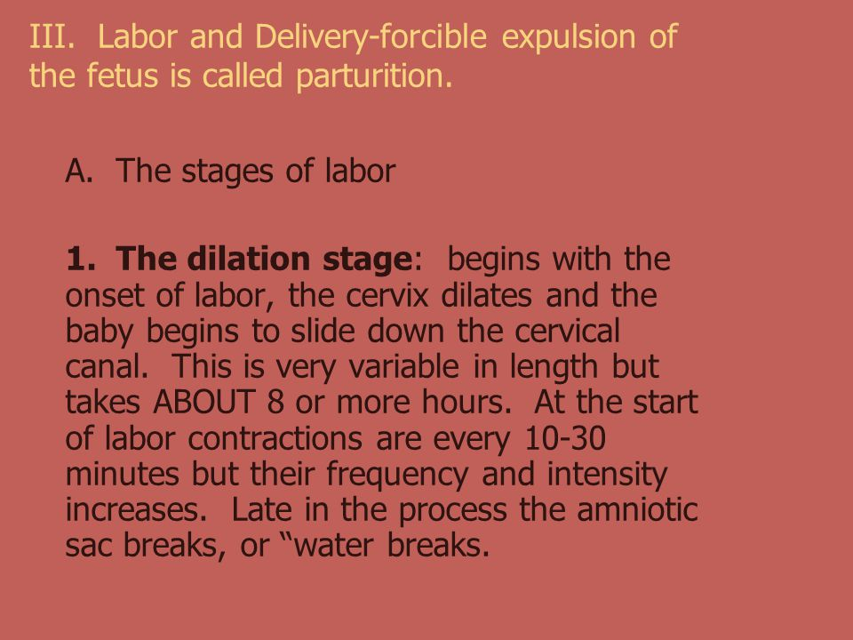 III. Labor and Delivery-forcible expulsion of the fetus is called parturition.