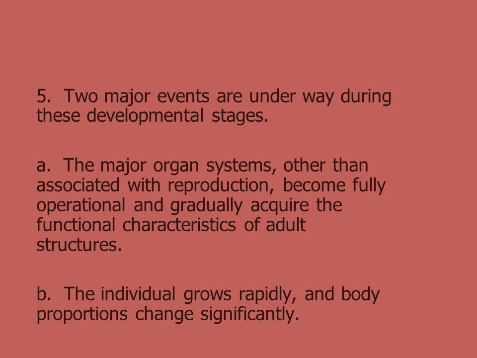 5. Two major events are under way during these developmental stages.