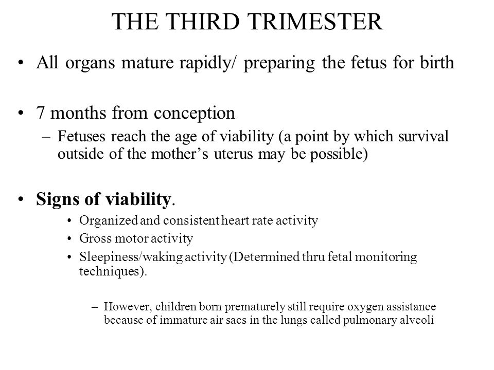 THE THIRD TRIMESTER All organs mature rapidly/ preparing the fetus for birth. 7 months from conception.