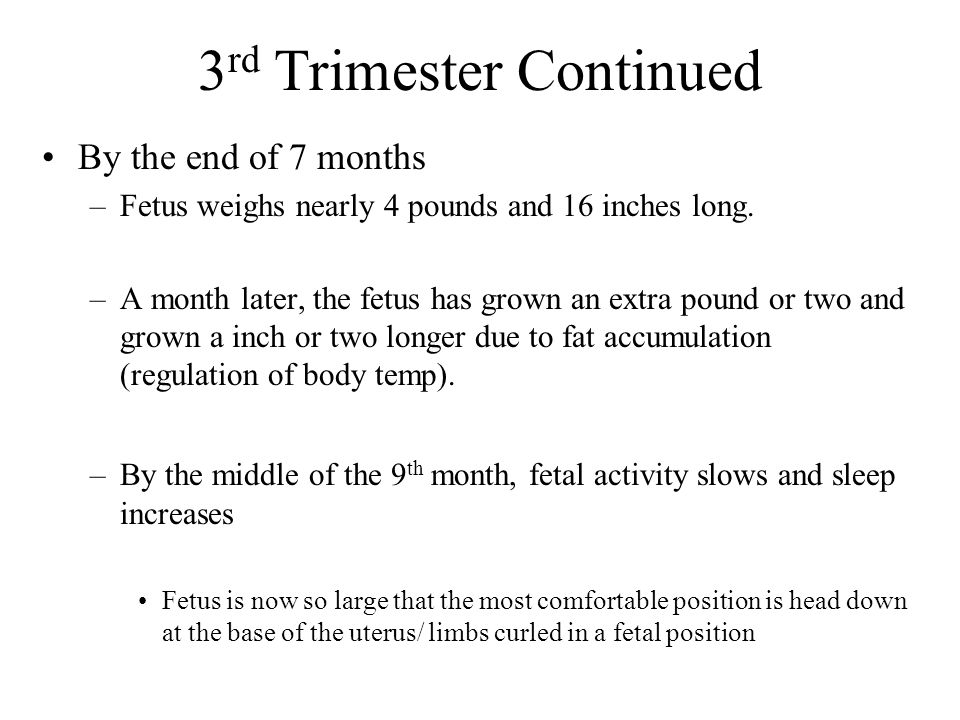 3rd Trimester Continued