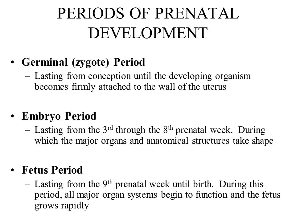 hazards during prenatal development