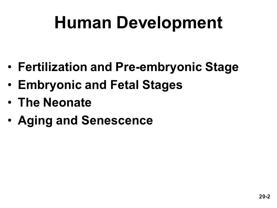 Human Development Fertilization and Pre-embryonic Stage