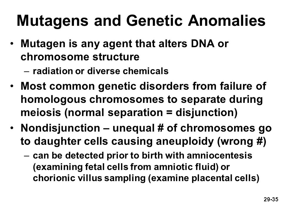 Mutagens and Genetic Anomalies