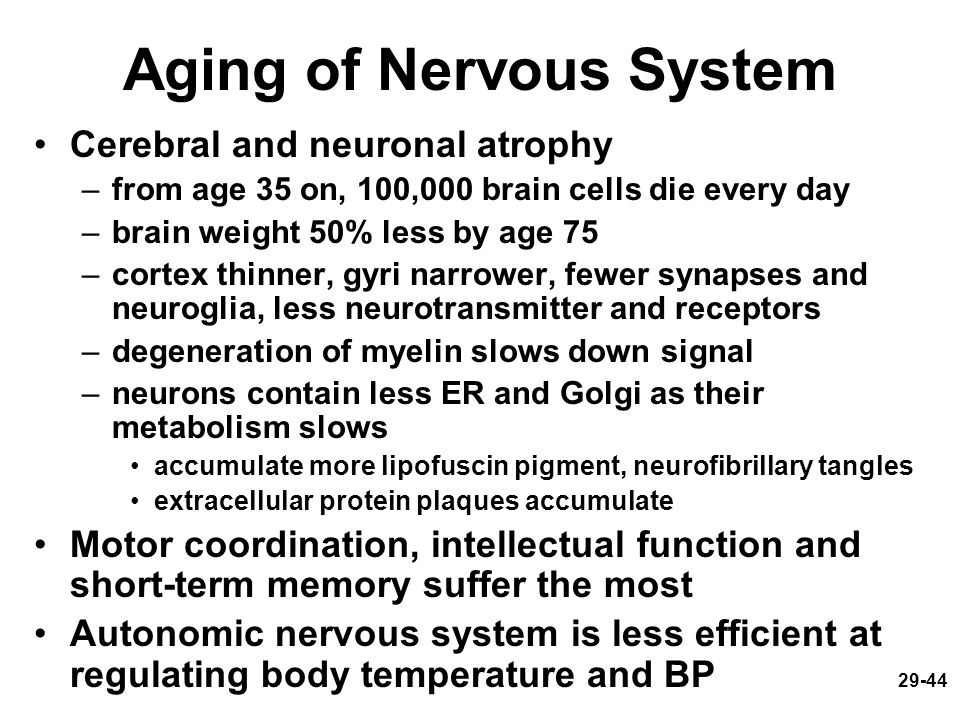 Aging of Nervous System