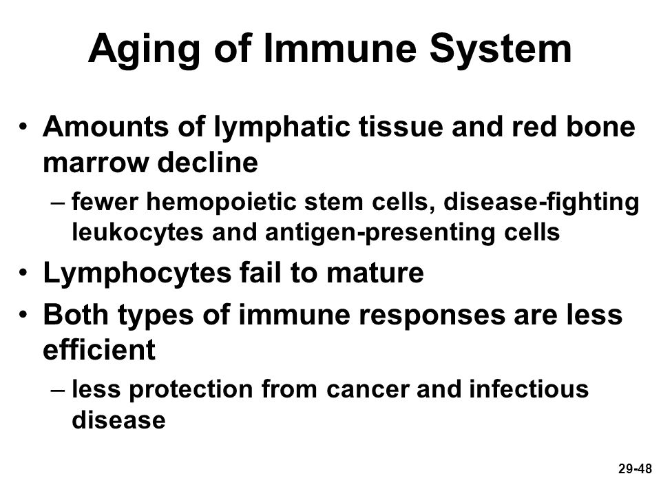 Aging of Immune System Amounts of lymphatic tissue and red bone marrow decline.