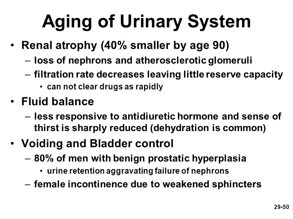 Aging of Urinary System