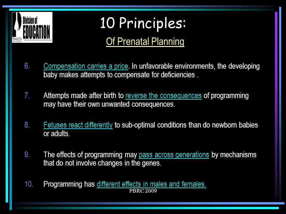 10 Principles: Of Prenatal Planning