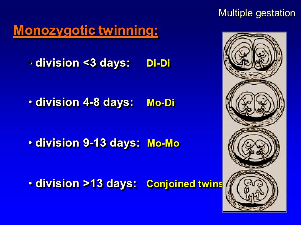 Monozygotic twinning: