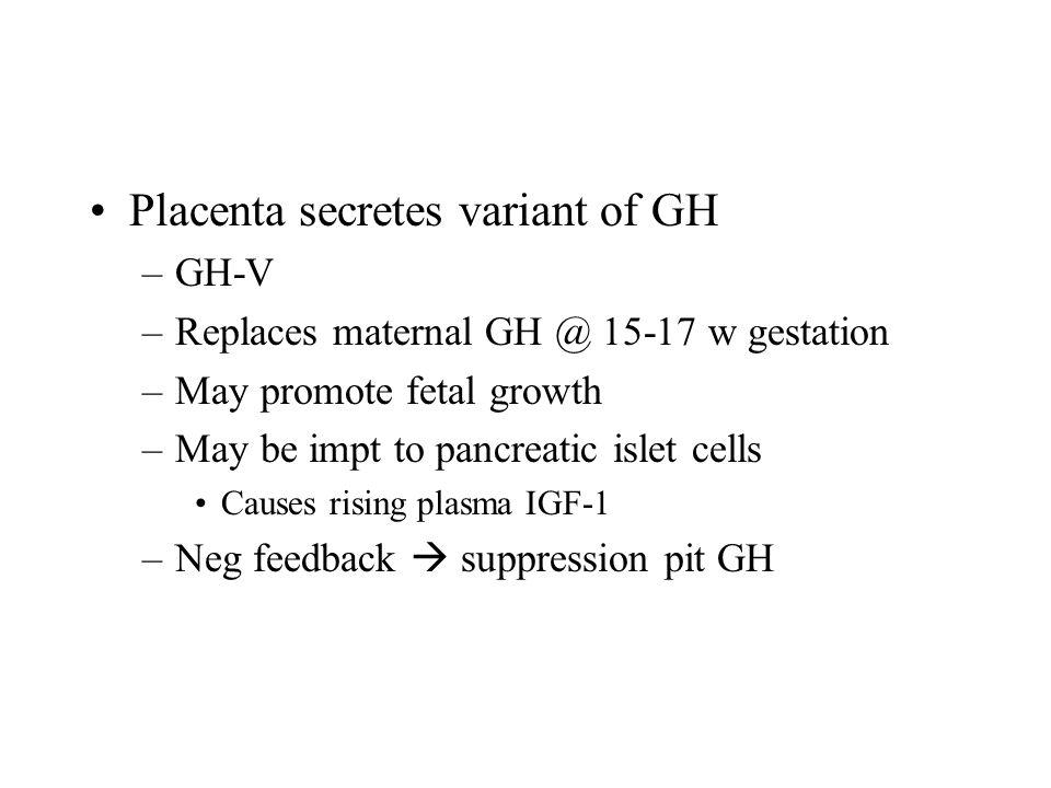 Placenta secretes variant of GH