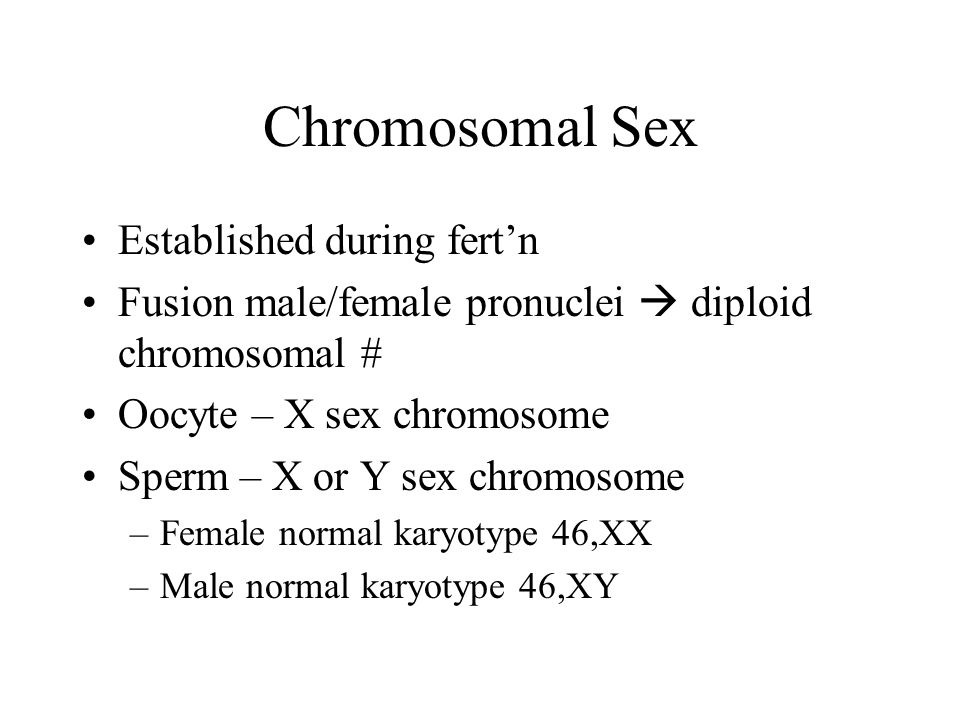 Chromosomal Sex Established during fert'n