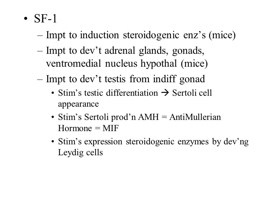 SF-1 Impt to induction steroidogenic enz's (mice)