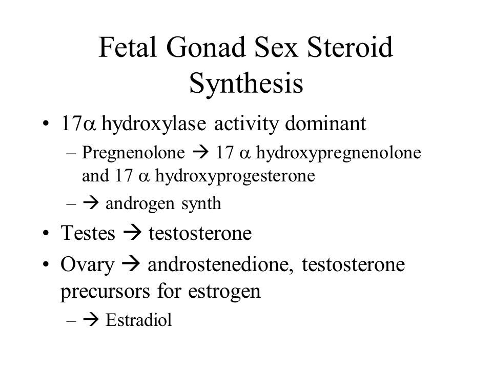 Fetal Gonad Sex Steroid Synthesis