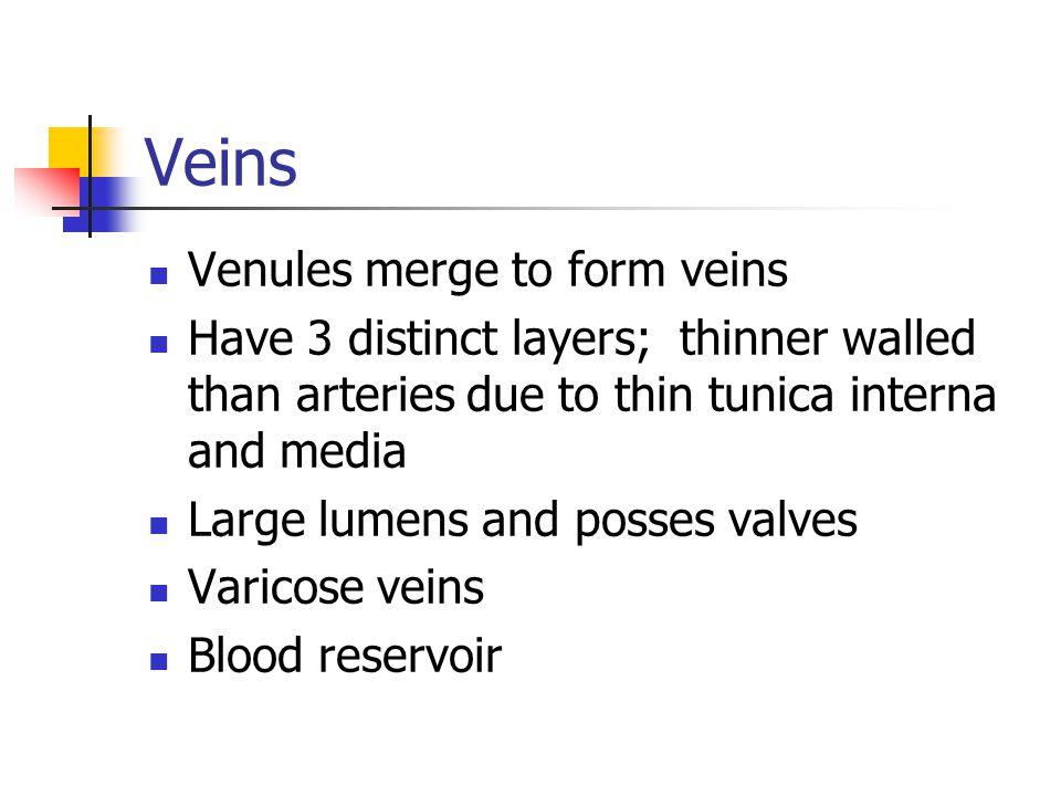 Veins Venules merge to form veins