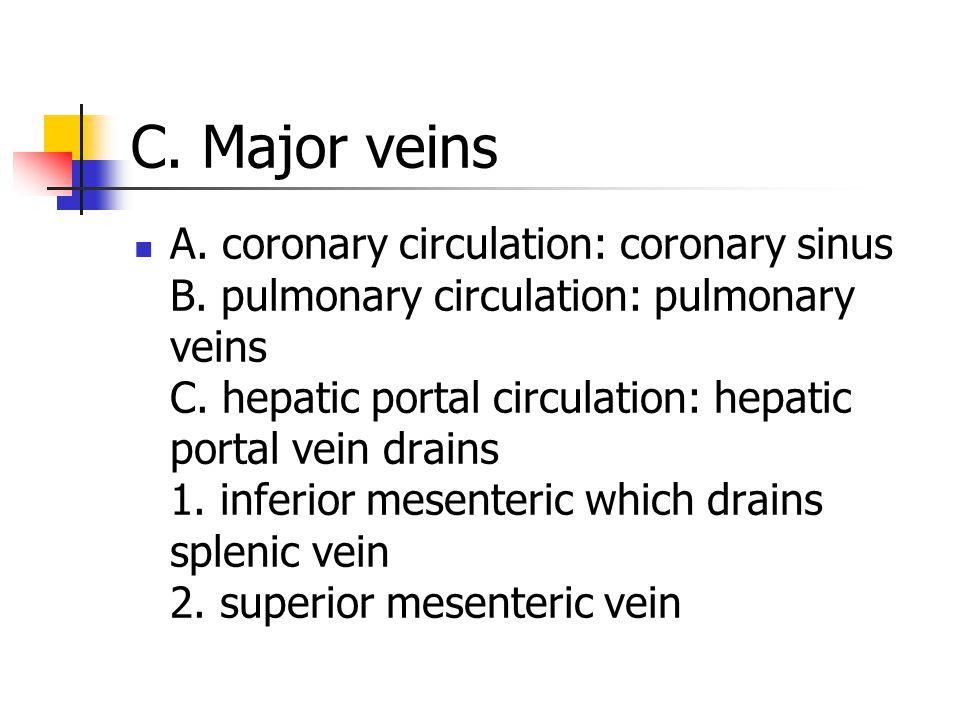 C. Major veins