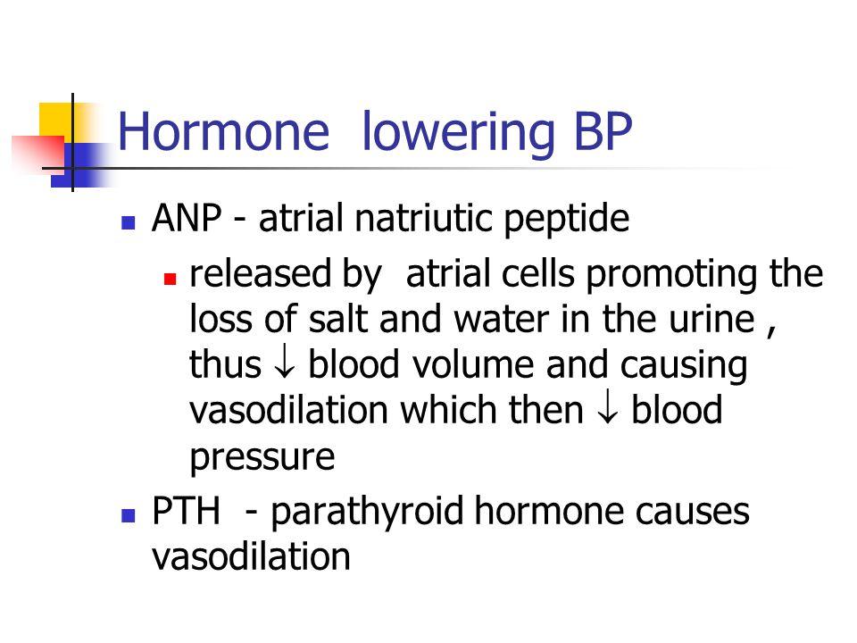Hormone lowering BP ANP - atrial natriutic peptide