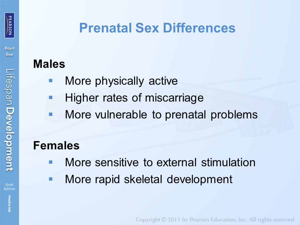Prenatal Sex Differences