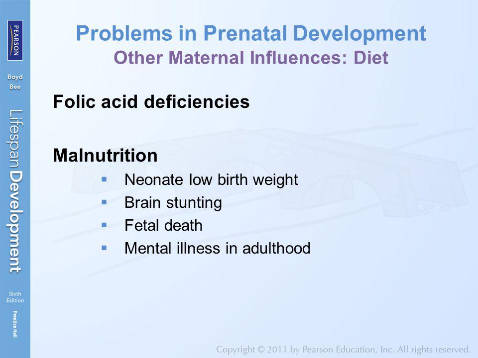 Problems in Prenatal Development Other Maternal Influences: Diet
