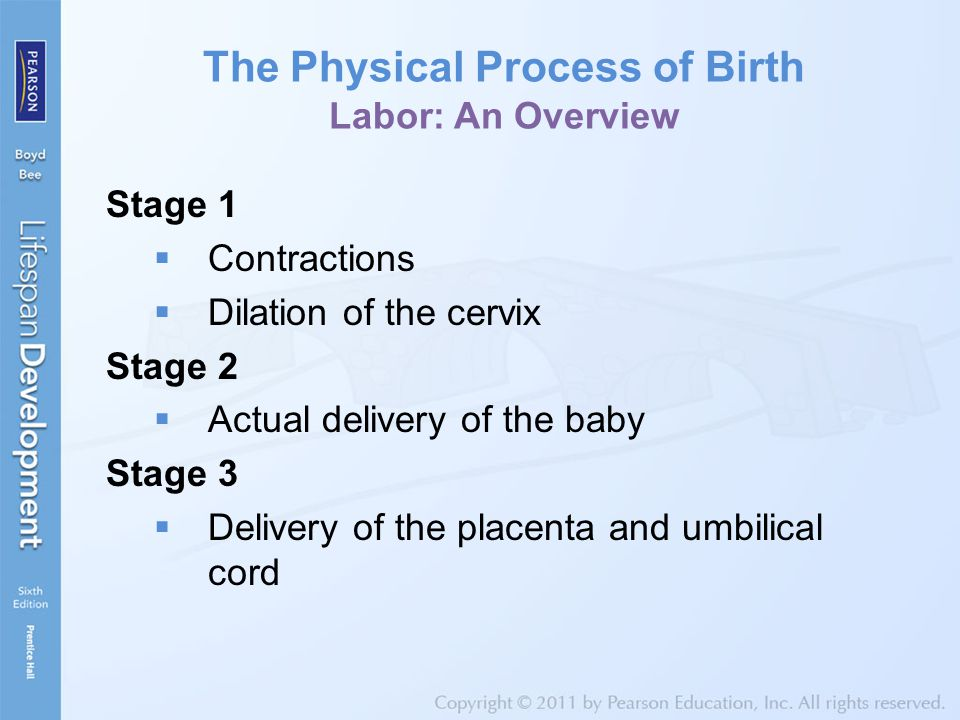 The Physical Process of Birth Labor: An Overview