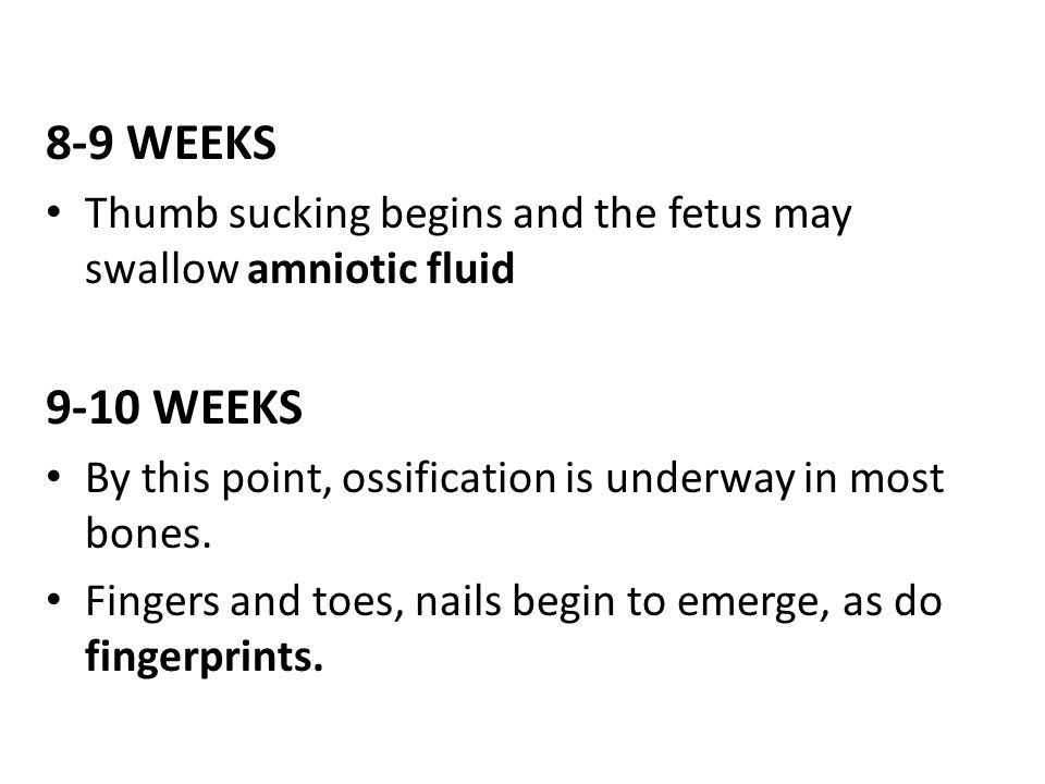 8-9 WEEKS Thumb sucking begins and the fetus may swallow amniotic fluid. 9-10 WEEKS. By this point, ossification is underway in most bones.