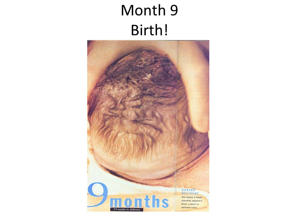 Month 9 Birth! men