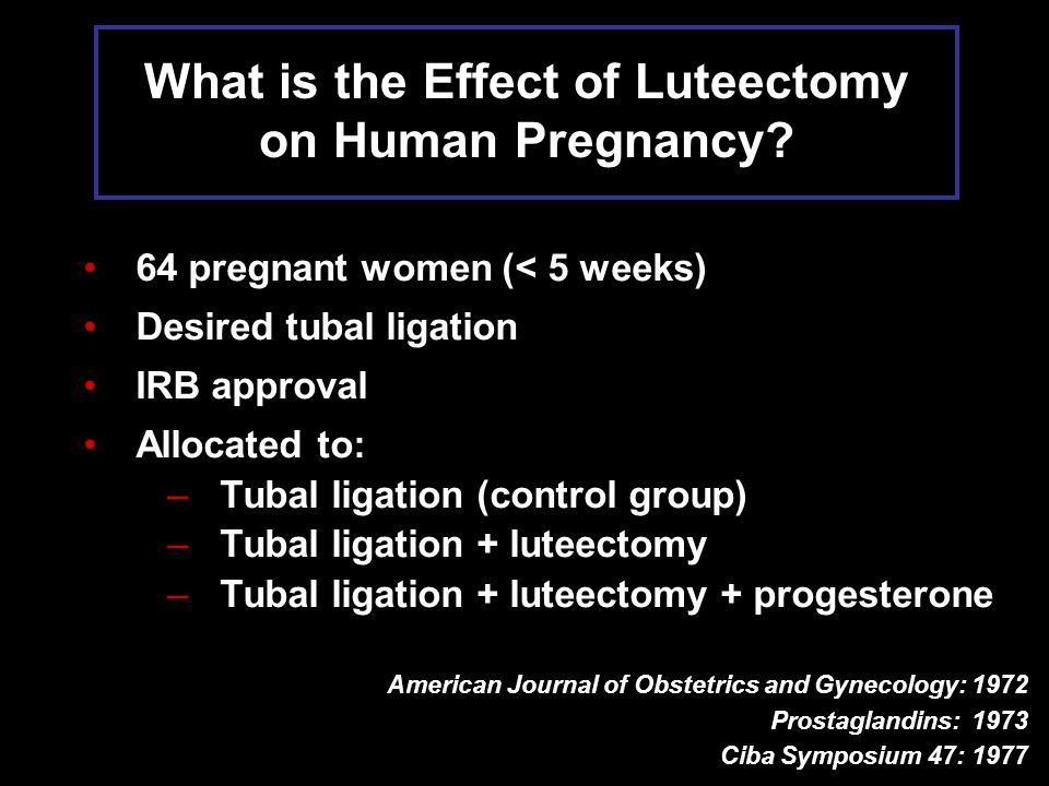 What is the Effect of Luteectomy on Human Pregnancy