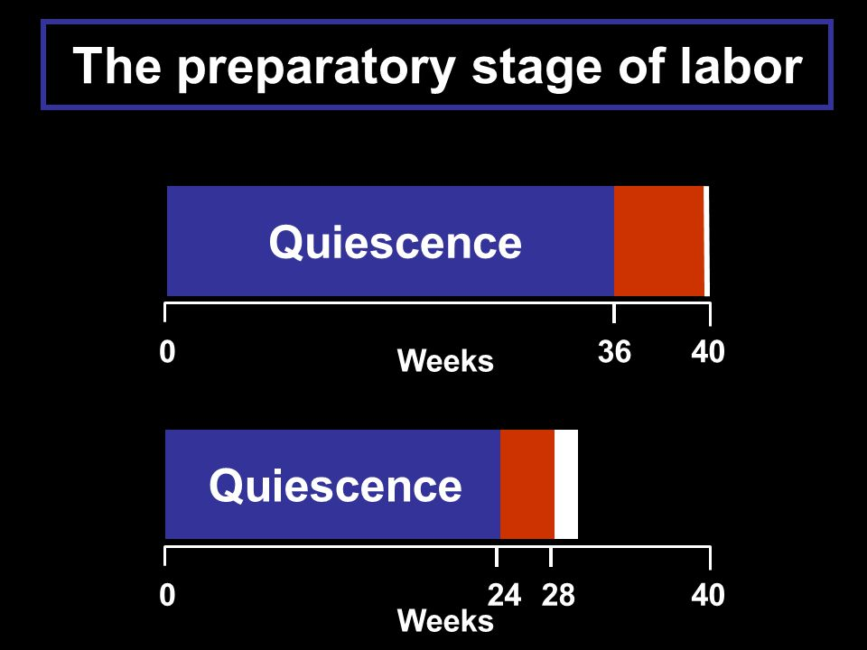 The preparatory stage of labor