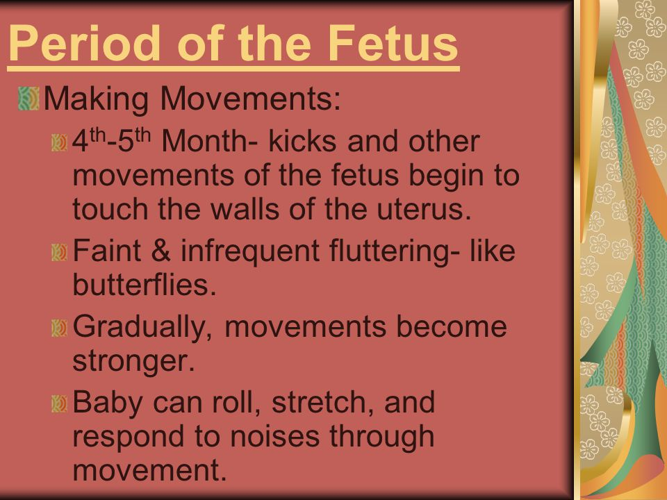 Period of the Fetus Making Movements: