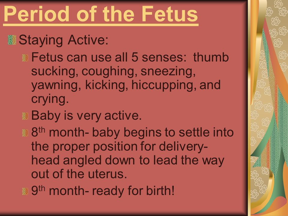 Period of the Fetus Staying Active: