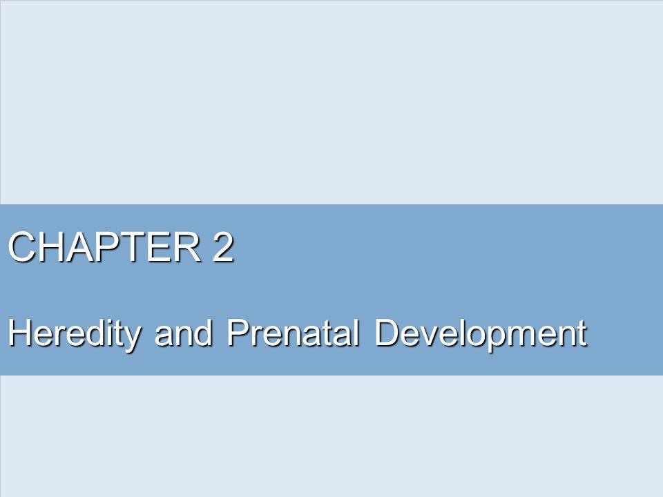 Heredity and Prenatal Development
