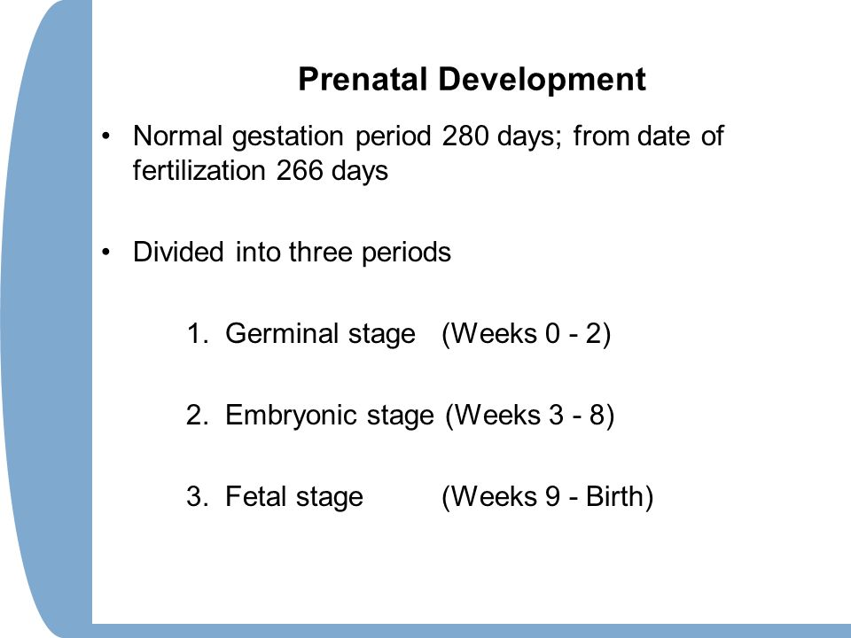 Prenatal Development Normal gestation period 280 days; from date of fertilization 266 days. Divided into three periods.