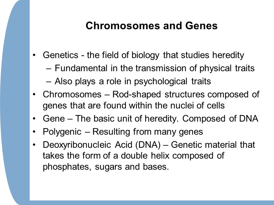 Chromosomes and Genes Genetics - the field of biology that studies heredity. Fundamental in the transmission of physical traits.