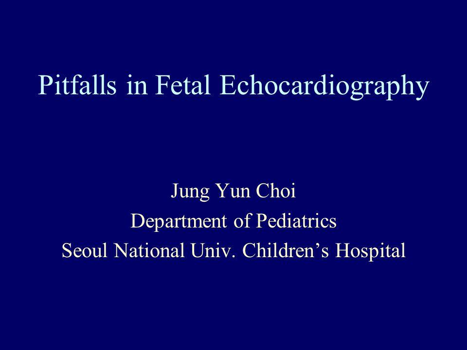 Pitfalls in Fetal Echocardiography