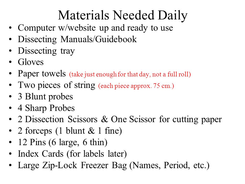 Materials Needed Daily