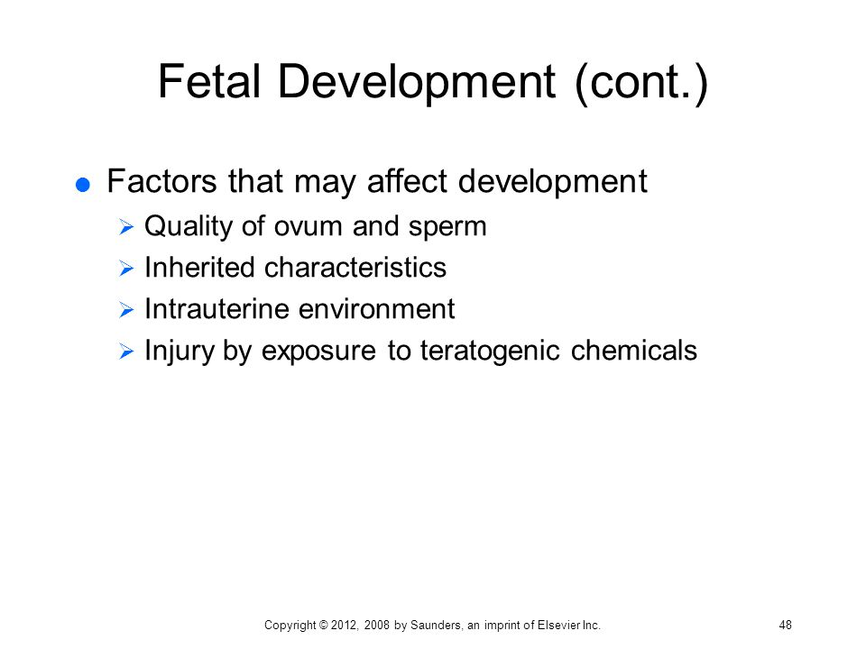 Fetal Development (cont.)