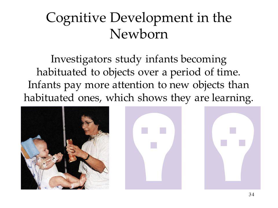 Cognitive Development in the Newborn