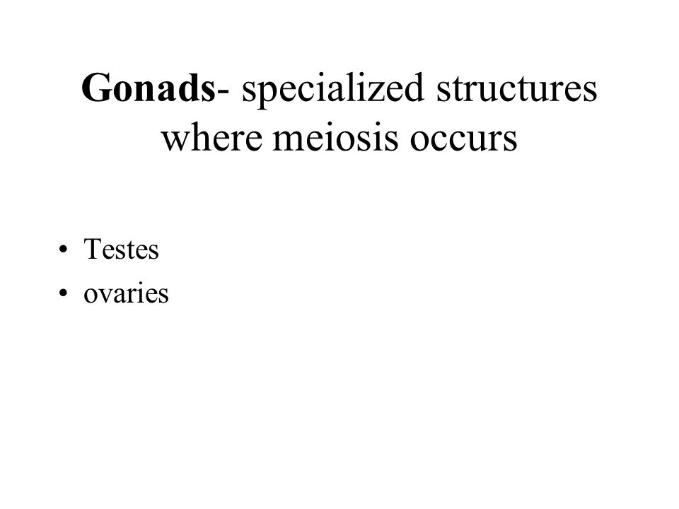 Gonads- specialized structures where meiosis occurs