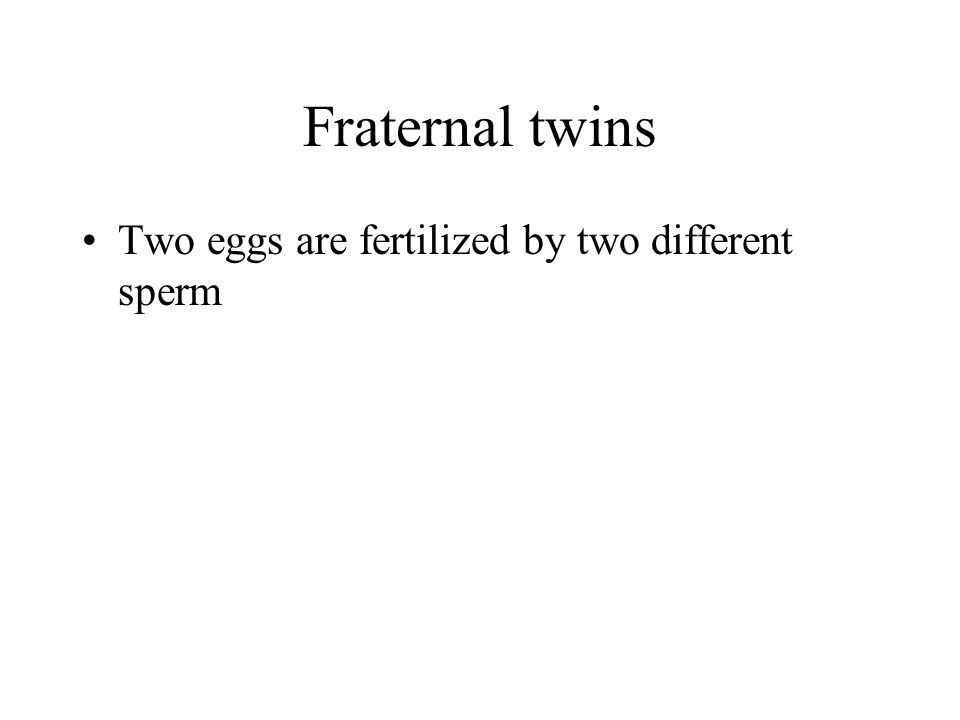 Fraternal twins Two eggs are fertilized by two different sperm