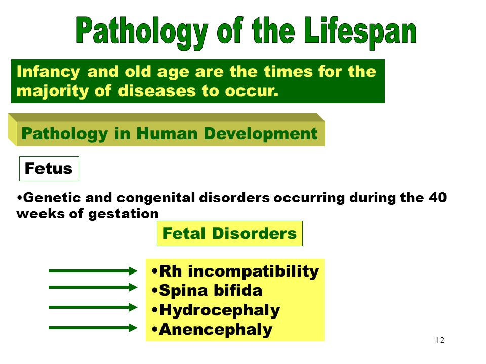 Pathology of Lifespan-Fetus
