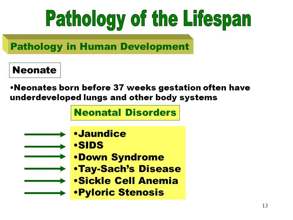 Pathology of Lifespan-Neonate