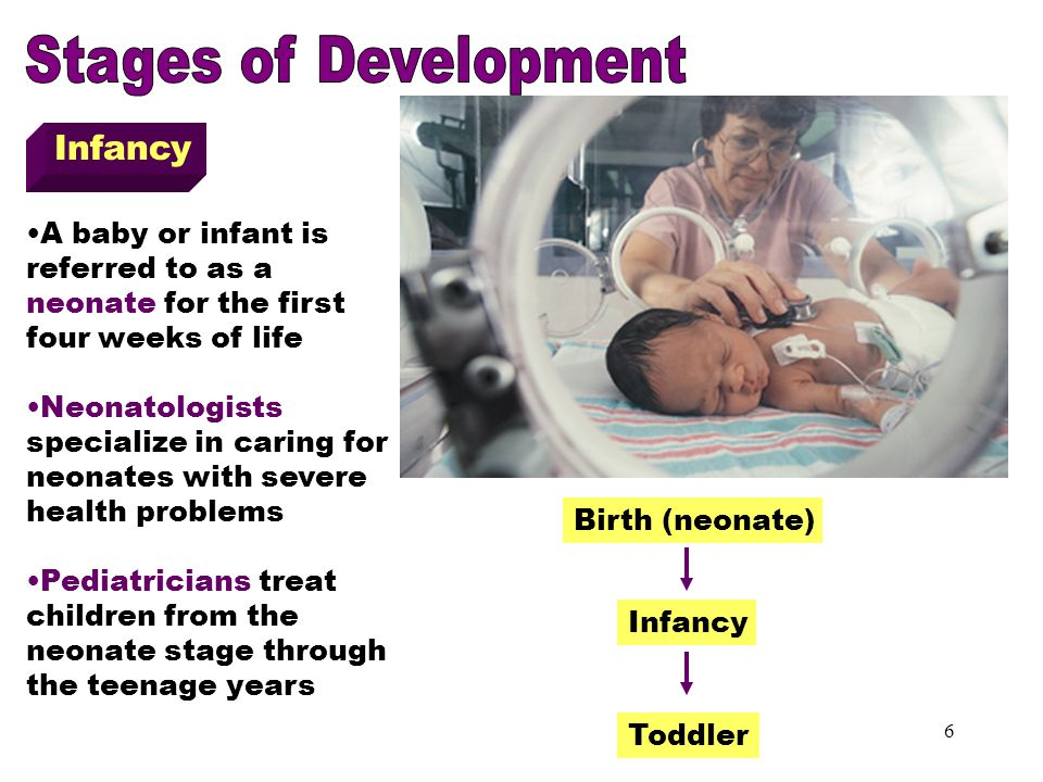 Infancy Stages of Development Infancy