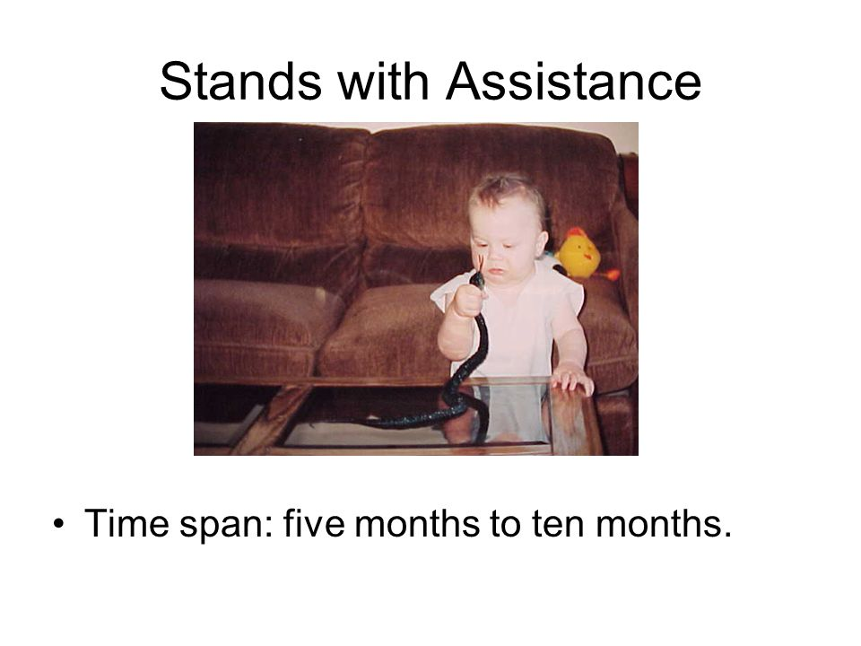Stands with Assistance
