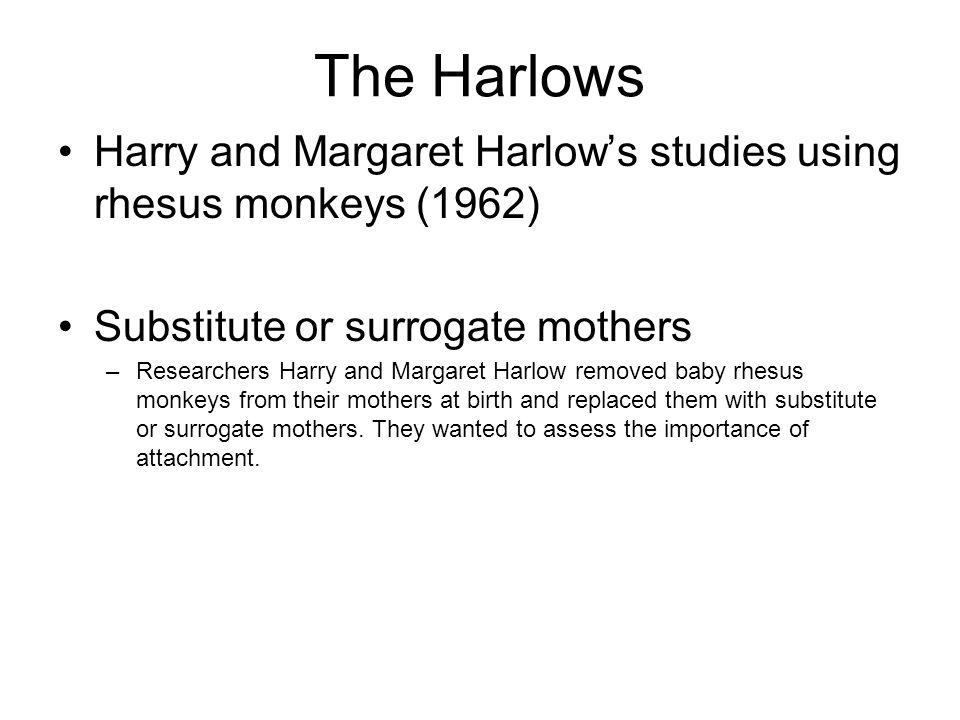 The Harlows Harry and Margaret Harlow's studies using rhesus monkeys (1962) Substitute or surrogate mothers.