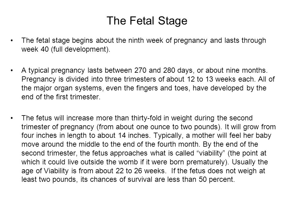 The Fetal Stage The fetal stage begins about the ninth week of pregnancy and lasts through week 40 (full development).